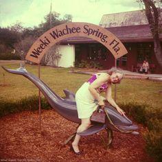 weeki wachee springs florida