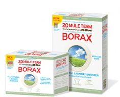 20 Mule Team Borax Laundry Detergent will work to get rid of all the roaches in your house and it will be cheaper than regular borax.