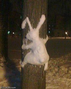 haha...Snow bunny hits pole!