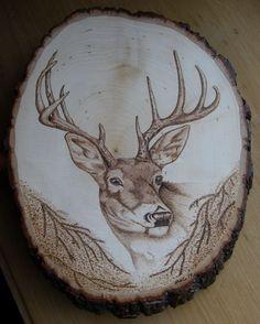 Deer burned on basswood by Corby / Chevreuil brûlé sur planche de tilleul par Corby