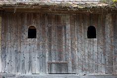 Bird, Outdoor Decor, House, Home Decor, Home, Haus, Birds, Interior Design, Home Interior Design