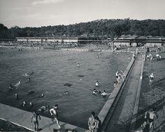 Parque sindical (piscina). Madrid | por Biblioteca Facultad de Empresa y Gestión Pública