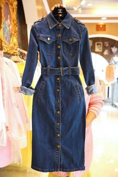 Past-Perfect & Present Trench Denim Dress