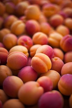 Apricots - we had an apricot orchard out back - my sisters and I lived in those trees in the summertime - devouring fruit, ripe OR green - and tossing a few down to the horses when they came near...