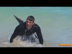 Great White Shark Attacks Inflatable Boat! (Exclusive Video) - YouTube