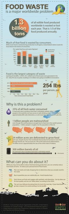 Infographic, developed by Door to Door Organics, and reported by Forbes, explains why food waste is an issue and gives some tips to reduce food waste. Food waste is a big issue across the globe. World Hunger, Food Security, Think Food, Vacuum Sealer, Edible Food, Food Food, Food Waste, Carbon Footprint, Environmental Science