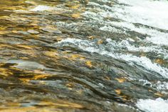 waves on river