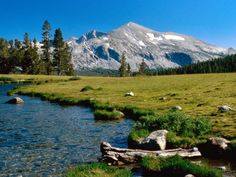 Unforgettable Things to See and Do in Yosemite National Park < Garden | Physic Tourism
