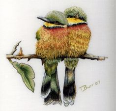 Trish Burr on Embroidery Books & More, Part 1