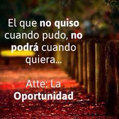 Aprovechar las oportunidades del camino.
