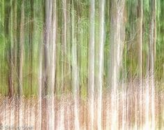 Impressionist Print  Fine Art photography  by fromcameratoprint