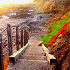 Fort Ross. Bodega Bay