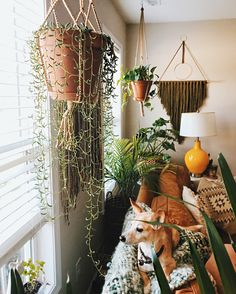 Instagram: @spencer.monk // #wicker #homedecor #boho #bohemian #camel #monstera #cactus #skull #jungalow #eclectic #styling #interior #southwest #hgtv #barcart #target #fringe #wallhanging #plants #hangingplants #dog