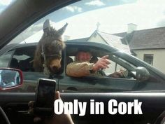 Only in Cork!