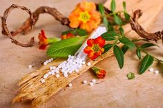 Homöopathie: Infos über homöopathische Mittel, eine Globuli Liste, Anwendungsgebiete in der Homöopathie, Infos über homöopathische Potenzen, die Wirkung von Globuli ...