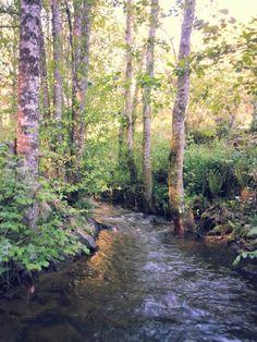 bebeteca. Taboada.Lugo. El agua es una constante en Galicia.