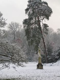 chateau fontainebleau garden in winter