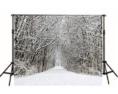 Winter 10x15 FT Photo Backdrops,Cute Seasonal Flowers Snowflakes Hand Drawn Style Abstract Artistic Blossoms Background for Photography Kids Adult Photo Booth Video Shoot Vinyl Studio Props