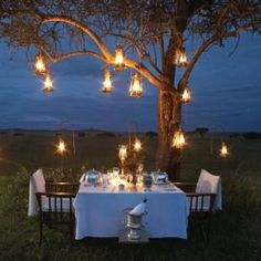 Honeymoon inspiration: Top 10 most romantic places to share a meal for two! (Pic: Singita)