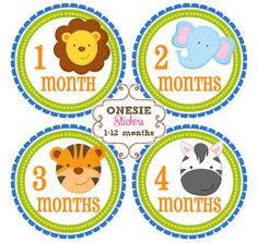 Baby Monthly Onesie Stickers Photo Prop Baby by ProjectBabySmiles, $9.00