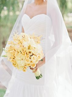 buttery yellow blooms | Amy Arrington