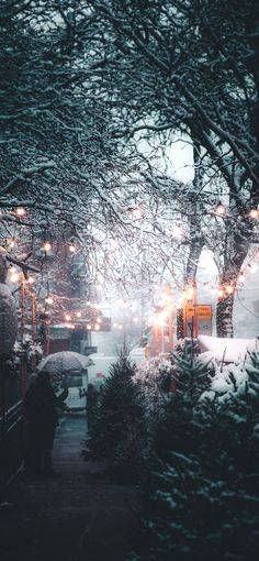 wallpaper winter iPhone XS and XS Max Christmas Wallpapers Cute Christmas Wallpaper, Wallpaper Winter, Xmas Wallpaper, Christmas Background, Christmas Aesthetic Wallpaper, Christmas Walpaper, Snow Wallpaper Iphone, Christmas Lights, Christmas Wallpaper Iphone Tumblr