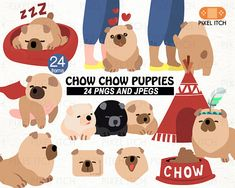 CHOW CHOW DOG. Chow clipart. Dog clipart. Puppies clipart.