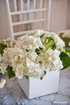 decoraconmaría: PLANTAS DE INTERIOR Y OTRAS: DECORAR CON HORTENSIAS