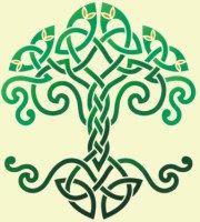 Le Pacte avec un Arbre   Krapo arboricole