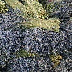 Save the stems of lavender after deheading...use for fire starters. The lavender oil ignites easily.