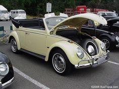 Volkswagen Bug painted stock Yukon Yellow L1009