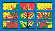 Varietats: Plant Communication by Yukai Du