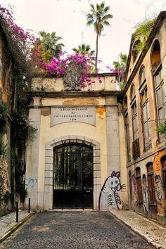 Jardim Botanico de Lisboa