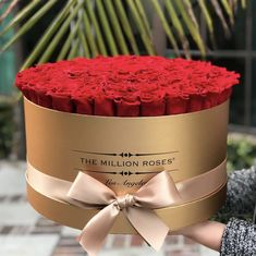 Our classic red roses are the perfect gift for anyone, any time of the year. Explore more of our expertly curated selections at the link in our bio. #TheMillionRoses Million Roses, Most Beautiful, Beautiful Pictures, Preserved Roses, Look At The Sky, Hollywood Life, The Millions, Flower Boxes, Classic Collection