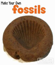 Make your own fossils from Play to Learn Preschool