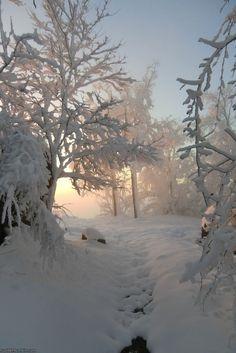 La pureté et le silence de l'hiver.