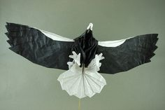 From a single uncut square. I made changes to the leg feathers, talons, wing feathers and beak compared to the first version. Steller's Sea Eagle, Paper Folding, Japanese Art, Eagles, Feathers, Origami, Birds, Craft Ideas, Animals