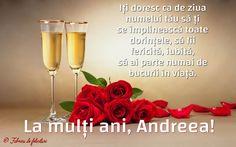Iți doresc ca de ziua numelui tău să ți se împlinească toate dorințele, să fii fericită, iubită, să ai parte numai de bucurii în viață. Flute, Champagne, Noiembrie, Flutes, Transverse Flute