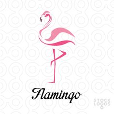 flamingo logo - Google Search