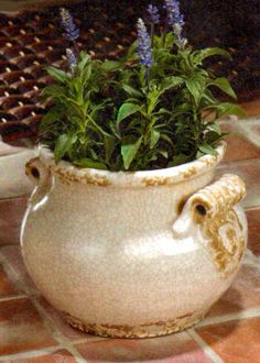 "Antique Urn Planter. A clean, classic shape and creamy crackle glaze give this lovely planter the genteel appeal of a time-treasured antique. Such a pretty place to show off your prized plant or beloved blooms!.   7 3/4"" diameter x 6 1/2"" high.  $25.00"
