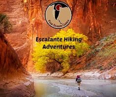 Guided Hiking Trips USA - Four Season Guides.