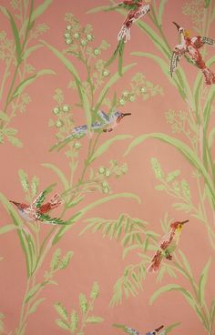 Augustine Wallpaper A printed wallpaper on a salmon pink background featuring colourful birds amongst  wildflowers and plants.