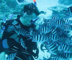 magical fish in Mauritius