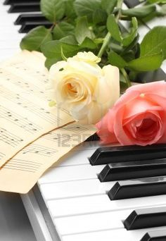 16412644-background-of-piano-keyboard-with-roses.jpg (276×400)