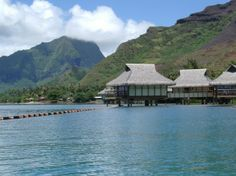 Never in my wildest dreams did I think I'd get to go to the Society Islands in French Polynesia for my honeymoon. Bora Bora, Tahiti, Society Islands, France, French Polynesia, Oh The Places You'll Go, The Dreamers, Vacations, Paradise
