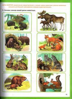 Nature Words, Forest School, Primary School, Wildlife, Watercolor, Activities, Kids, Pictures, Art