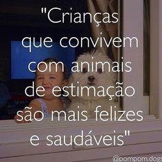 CONCORDO! #maedecachorro #filhode4patas #cachorros #maedepet #cachorro #petmeupet #paidecachorro #amocachorro #cachorroterapia #caopanhia #caopanheiro #cachorroétudodebom #cachorroterapia