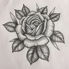 Elbow Tattoos, Tattoos Skull, Feather Tattoos, Flower Tattoos, Girl Tattoos, Rose Outline Tattoo, Rose Drawing Tattoo, Tattoo Drawings, Traditional Rose Tattoos