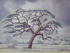 (n/a) Jacob Hendrik Pierneef (South African, Camelthorn tree, Kalahari x 61 cm. x 24 in. African Paintings, Tree Paintings, Bonsai Art, South African Artists, Minimalist Art, Tree Art, Famous Artists, Pop Art, Moose Art