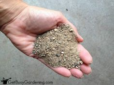 Adding sand to potting soil for succulents